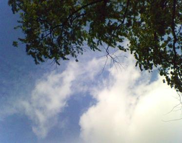 Sky_tree